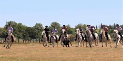 Le CSA de la Gendarmerie promeut les traditions